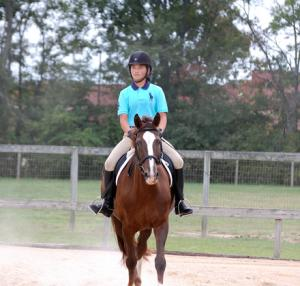 Mid South Horse Review News