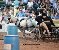 Carriage Barrel Races