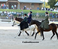 Horse Fair and Food Truck Festival photos