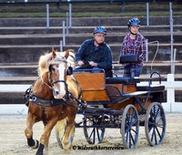 Nashoba Carriage Derby