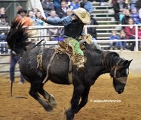 Liberty Bowl Rodeo