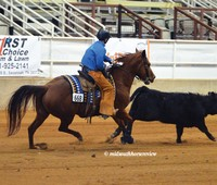 March Madness Vol. Ranch Horse Show