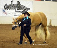 Palomino World Show